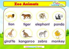 Zoo animals vocabulary video