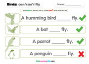 Birds can cant fly 2