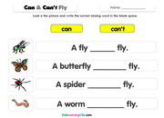 Insects sentences