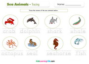 Sea animals tracing