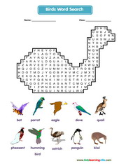 Birds Wordsearch