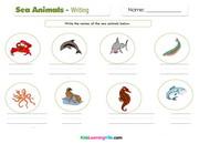 Sea animals writing