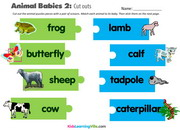 Animal babies 2