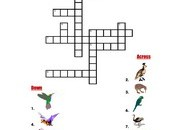 Birds-Crossword