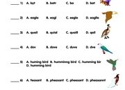Birds-Spelling