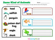 animal-groups