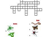 insects-Crossword