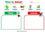 plants-vs-animals