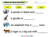 zoo-animals-description