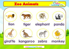 Zoo animals vocabulary video