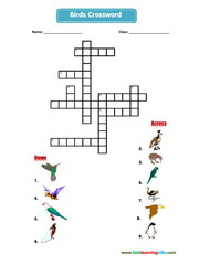 Birds crossword