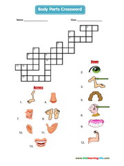 Body crossword