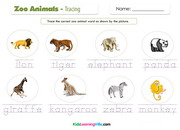 Zoo animals tracing