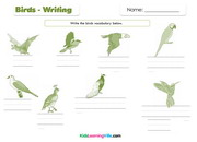 Birds writing