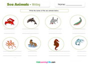 Sea animals writing